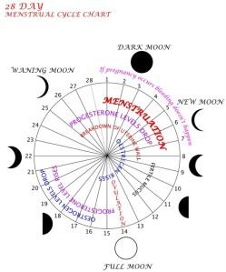 moon menstrual cycle chart calendar